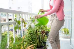 Woman watering plants on patio splashing water on ground.